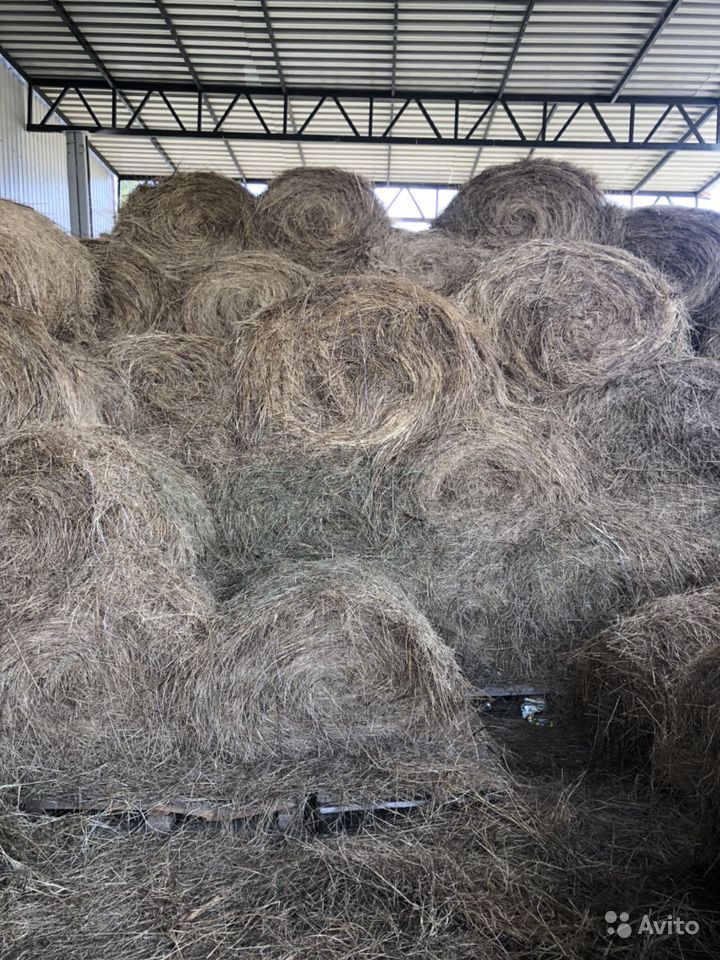 Продается сено в рулонах