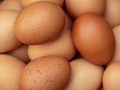 Продается яйцо куриное