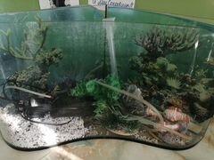 Продаётся угловой аквариум