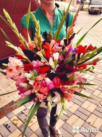 Цветы гладиолусы купить в санкт-петер цветы на заказ в брянске с доставкой
