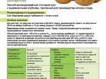 Картофель семенной безвирусный с сертификатом