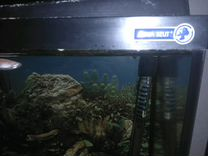 Аквариум Aqua Szut