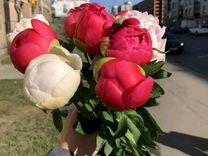 Крупные Пионы, разные цвета Доставка цветов